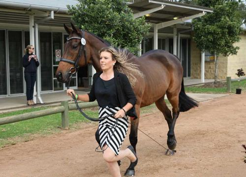 libby-and-skybie-trot-up-at-sydney-lr[1]